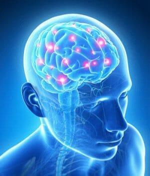 nootropic dopamine motivation