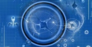 Cholinergic supplement for memory